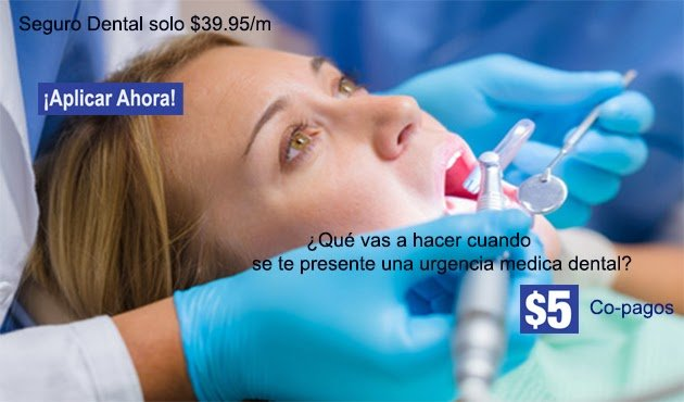 Aplicar Seguro Dental, Plan Dental MetLife en Miami Florida